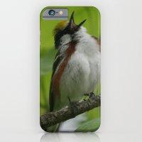 Chestnut-sided Warbler iPhone 6 Slim Case