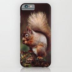 RED SQUIRREL. iPhone 6 Slim Case