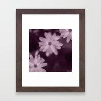 Magnolia dance (purple) Framed Art Print