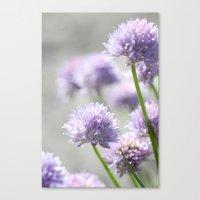 I Dreamt Of Fragrant Gar… Canvas Print