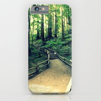 Muir Woods Path iPhone 6 Slim Case
