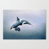 orcinus orca Canvas Print