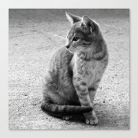 Lloyd- Black And White C… Canvas Print