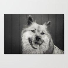 a sepia portrait of a dog Canvas Print