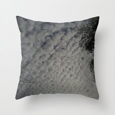 Skyscape 3 Throw Pillow
