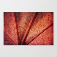 leaf abstract Canvas Print