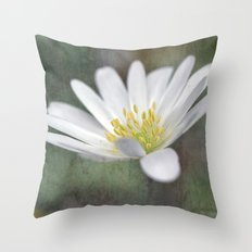 ...all nature is your congratulation... Throw Pillow
