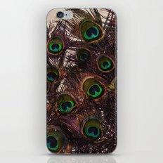 Peacock Feathers iPhone & iPod Skin