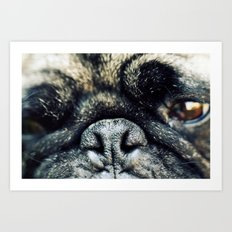 Pug-Nosed Art Print