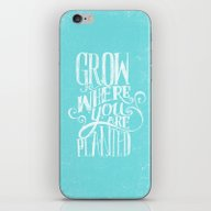 Grow Where You Are Plant… iPhone & iPod Skin
