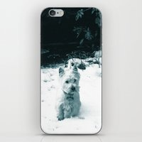 This Is Snow Fun... iPhone & iPod Skin