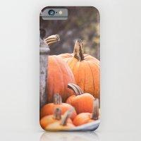 pumpkins + milk cans iPhone 6 Slim Case