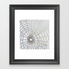 Dew Drop Spider Web Framed Art Print