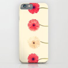 Technicolour Flowers  iPhone 6 Slim Case