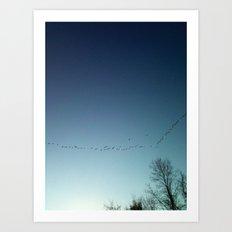 migrate Art Print