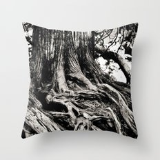 Beauty in the old Throw Pillow