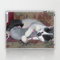 Sleeping Kitten Laptop & iPad Skin