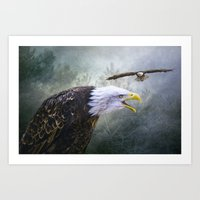 Eagle territory Art Print