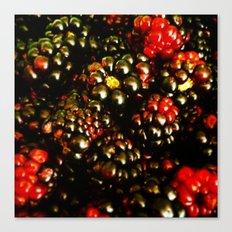 Berry Berry Canvas Print