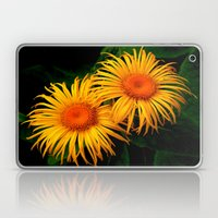 Daisy, Daisy Laptop & iPad Skin