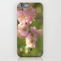 iPhone Cases featuring Almondblossoms in LOVE  by UtArt