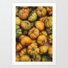campio de' Fiori heirloom tomatoes Art Print