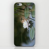 Water Lily 2 iPhone & iPod Skin