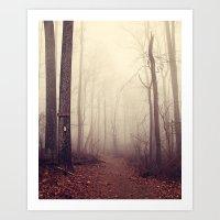Appalachian Trail Art Print