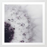Dandy drops Art Print