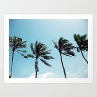 Palm Trees in a Row Art Print