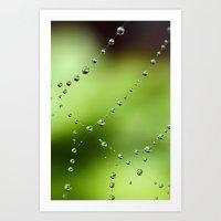 Web Wonder Art Print