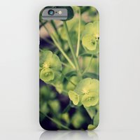 Timely iPhone 6 Slim Case