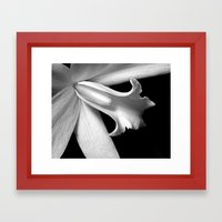Black And White Orchid  Framed Art Print