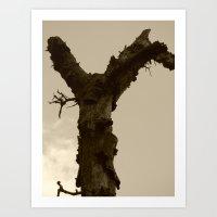 Dead Tree 2015 II Art Print