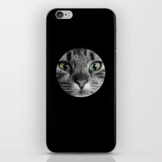 cats details square iPhone & iPod Skin