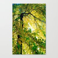 Turn Of The Season Canvas Print