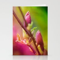 bud Stationery Cards