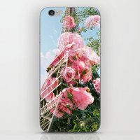 Paris in the Springtime  iPhone & iPod Skin
