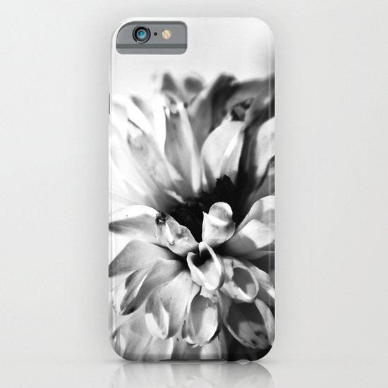 Dahlias 3 iPhone & iPod Case