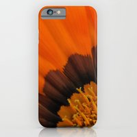 Orange Gazania iPhone 6 Slim Case