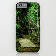 Entrance - color iPhone 6s Slim Case