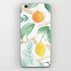sicily  iPhone & iPod Skin