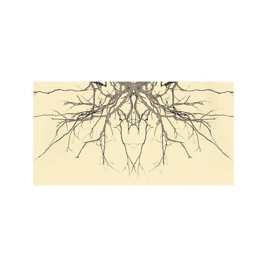 branches#04 Art Print