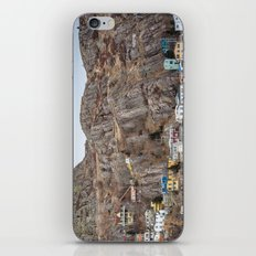 Newfoundland 4 iPhone & iPod Skin