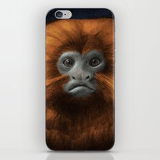 Golden Lion Tamarin iPhone & iPod Skin