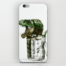 Recalibrating Archaelogical Timescales iPhone & iPod Skin