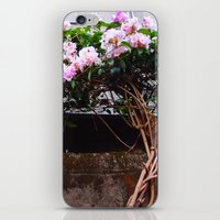Autumn Garden iPhone & iPod Skin