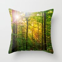 Morning sun in the forest Throw Pillow
