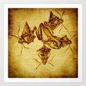quatic species 2 Art Print