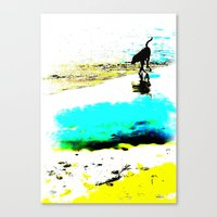 Beachcomber Canvas Print